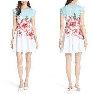 NWT TED BAKER Floral Maevea Nectar Fit&Flare Dress